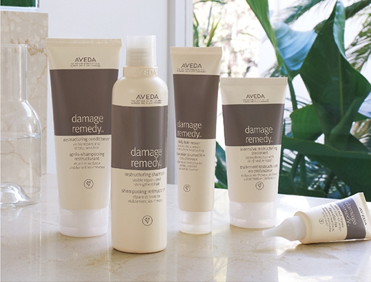 damage remedy hair